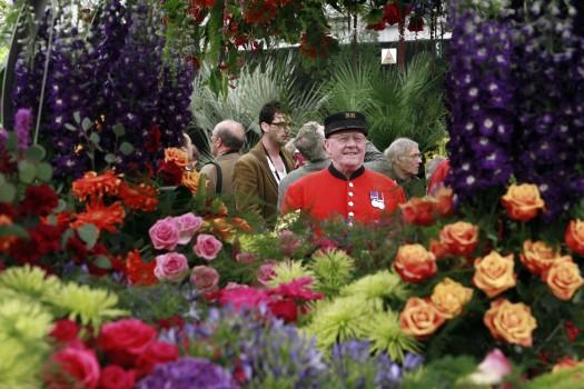 Роллинг Стоунз, «Алиса в Зазеркалье», опера «Борис Годунов» и выставка цветов в Челси