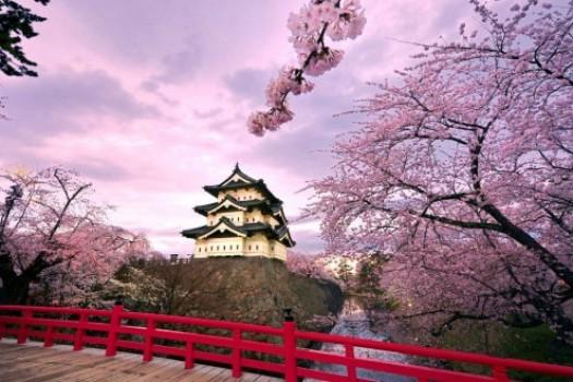 Путешествия: куда поехать весной и в начале лета