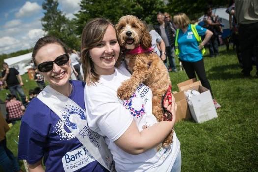 Собачки в акции «Лай за жизнь» помогают бороться с раком