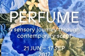 Чувственное путешествие через современный аромат