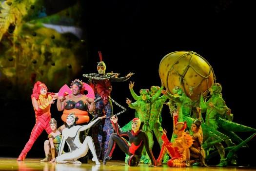 Цирк дю Солей: из жизни насекомых