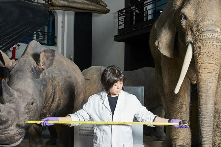 Музей естествознания вновь откроется 5 августа