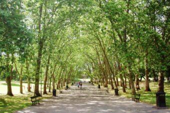 Идеи для прогулок: парки Лондона