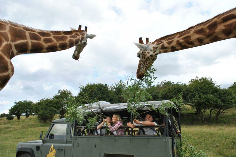 safari parks